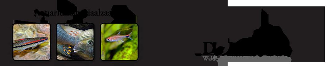 "Aquariumspeciaalzaak ""De Maanvis"" Logo"